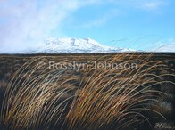 Southerly Change, Mt Ruapehu   SOLD