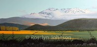 "Mt Ruapehu ""Evening Light"" SOLD"